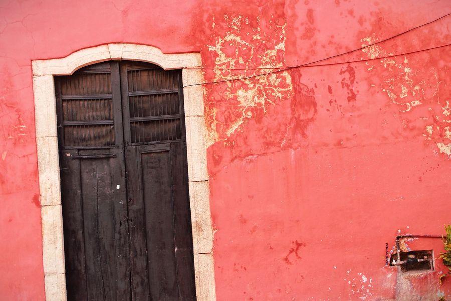 eliminar termitas puerta