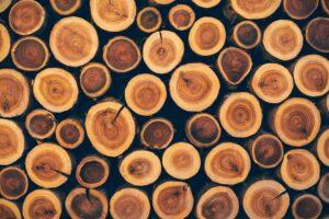 cual es la madera mas dura